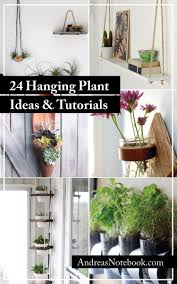 Wall Mounted Planters by 24 Ways To Hang Plants On The Wall Andrea U0027s Notebook