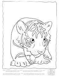 baby tiger coloring pages getcoloringpages