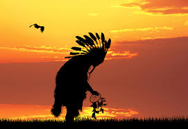 going native my journey from long hair in native american culture the longhairs