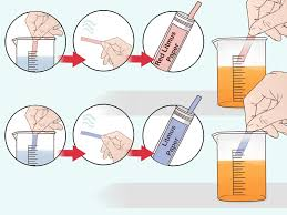 How To Make Litmus Paper At Home - 3 ways to do a litmus test wikihow