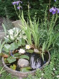 Wildlife Garden Ideas Wildlife Garden Pond