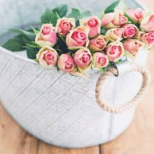 buy roses why you should never buy a bouquet of roses for your