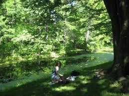 Botanical Garden In The Bronx Bike To The Bronx Botanical Gardens Fuhgedouttabrooklyn