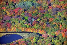 best places to see fall foliage in the northeast newsday