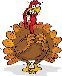 countdown to turkey day tom thumb and vs