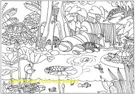 free coloring page of the rainforest unique rainforest coloring pages 22 for download coloring pages with