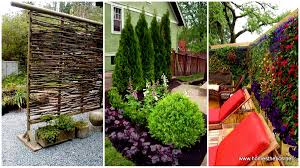 Landscaping Ideas For Backyard Privacy Backyard Deck Privacy Walls How To Screen Neighbors Second Story
