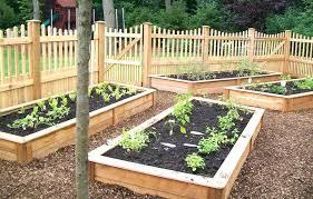 Garden Layouts For Vegetables Above Ground Vegetable Garden Ideas Tier Gardening Design