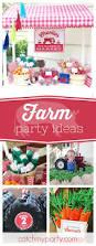 1842 best boy birthday party ideas u0026 themes images on pinterest