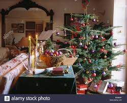 christmas tree behind sofa in traditional country living room with
