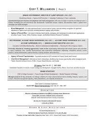 Sample Resume  Resume Exles For Vp Of Sales