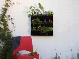 Watering Vertical Gardens - discover self watering gardens builders