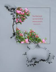 one kind word winter japanese proverb original photographic