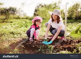 Garden Family Family Garden Stock Photo 201323285 Shutterstock