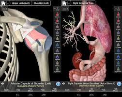 essential anatomy 3 apk essential anatomy 3 1 1 3 apk free apkradar