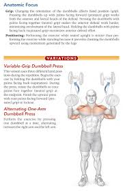 bodybuilding anatomy 2nd edition dumbbell shoulder press