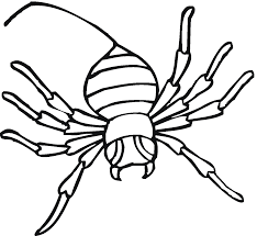 lovely halloween spider coloring pages womanmate