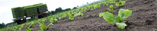 zahlungsansprüche landwirtschaft internetplattform für zahlungsansprüche za börse