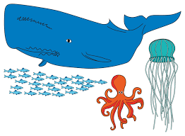 how to draw underwater animals 6 steps with pictures wikihow