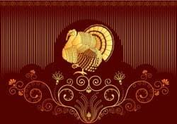 wine for turkey the difference between a thanksgiving turkey and a