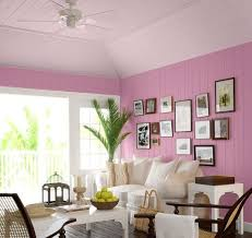 ceiling color ideas photo gallery