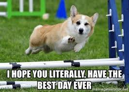 Best Day Meme - i hope you literally have the best day ever ridiculously