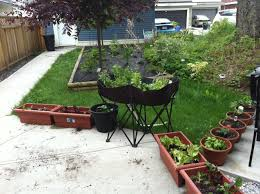 cheap container vegetable gardening ideas home outdoor decoration