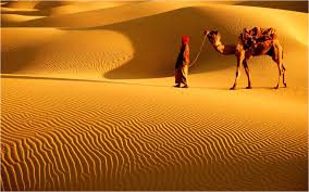 thar desert location unique holidays