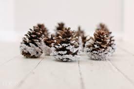 diy snow covered pinecones ella