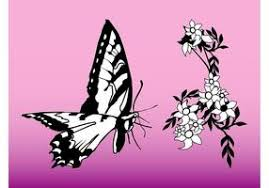 pictures of flowers and butterflies 8389 free downloads