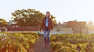 eagle street rooftop farm 2016 american made honoree martha stewart