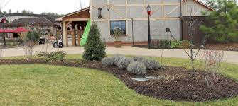 mulch selection and installation turf