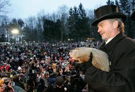 groundhog pictures punxsutawney phil