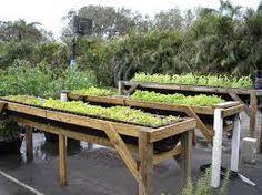 joey u0027s place my water tank raised vegetable garden beds garden