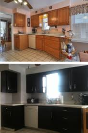 Kitchen Cabinets Staining by 144 Best Cabinet Make Over Gel Stain Images On Pinterest