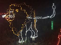 Zoo Lights by 10 Things You Need To Know Before You Go To The Houston Zoo Lights