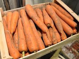 creance pour cuisine carotte de créances cuisine française