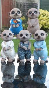 17 best meerkats images on garden ornament baby