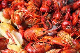 crawfish catering houston catering live crawfish houston