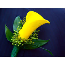 calla boutonniere yellow calla boutonniere petal town flowers wine country weddings