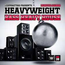 royalty free bass heavy house samples edm music and drum loops