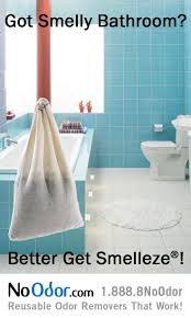 bathrooms best bathroom cleaning tips 20 best bathroom odor solutions images on smell