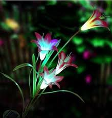 Multi Colored Solar Garden Lights by 31 Best Light Up My Life Images On Pinterest Indoor Outdoor