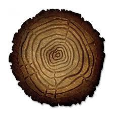 tree rings images Sizzix tim holtz alterations tree rings bigz die with texture fades jpg