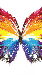 butterfly abstract colorful colourful