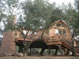 53 best images about tree houses on a tree the