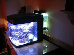 Refugium Light Fuge Help Bc29 Reef Sanctuary