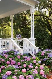 best 25 flowers on porch ideas on pinterest diy outdoor wood