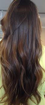 long brown hairstyles with parshall highlight super healthy hair great black tea colour hair makeup