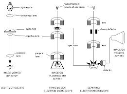 name one advantage of light microscopes over electron microscopes microscopy